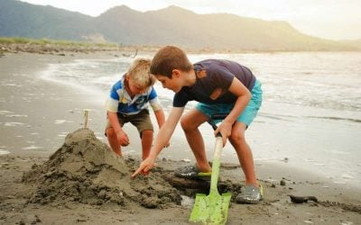 New Zealand School Holidays 2021
