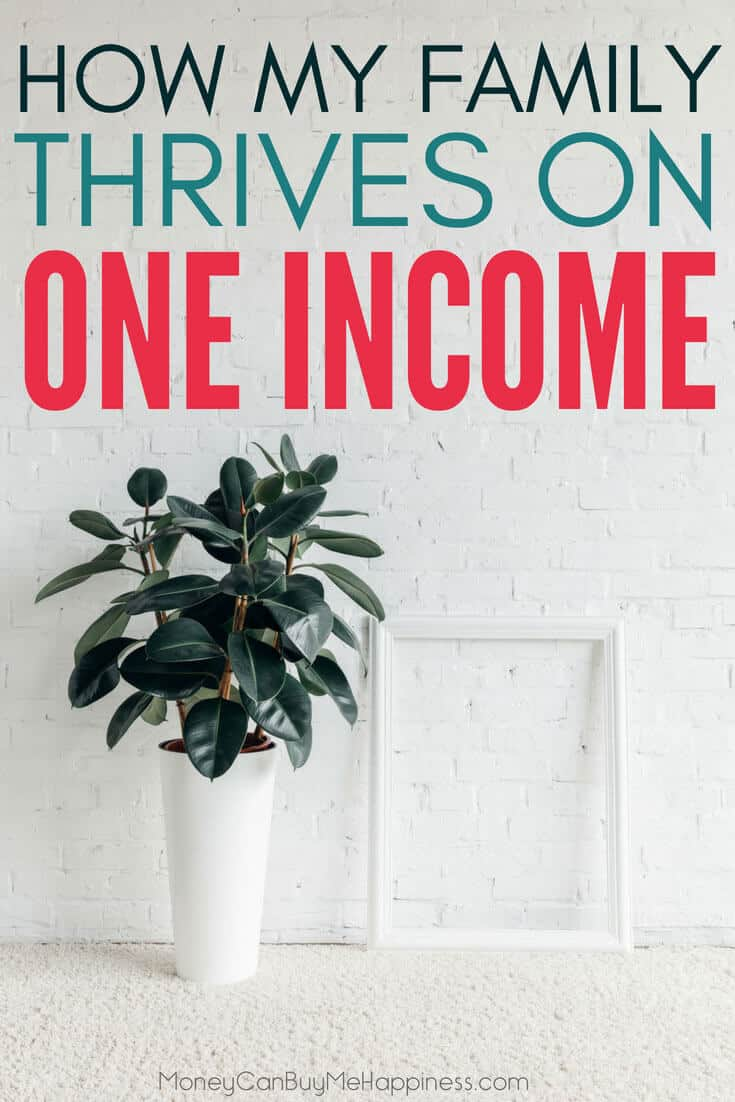 Wondering how to survive on one income? Well you can thrive on one income. Here's how we do it one a blue-collar wage. I'm sharing all my best tips for how to live frugally on one income. One income living has suited our family perfectly, as I'm able to stay home with my kids. You can do it too!