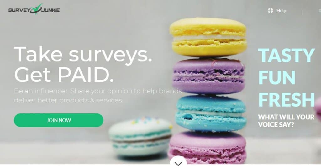 Screenshot of Survey Junkie home screen showing macarons stacked in a pile 4 high. Survey Junkie is a website that offers online focus groups and paid surveys