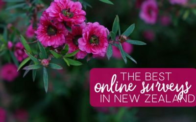 Best Paid Online Survey Sites in New Zealand to Earn Extra Money