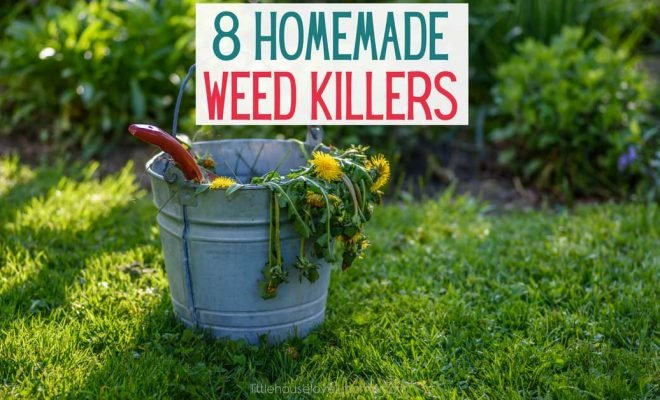 8 Homemade Weed Killers That Won't Blow Your Budget