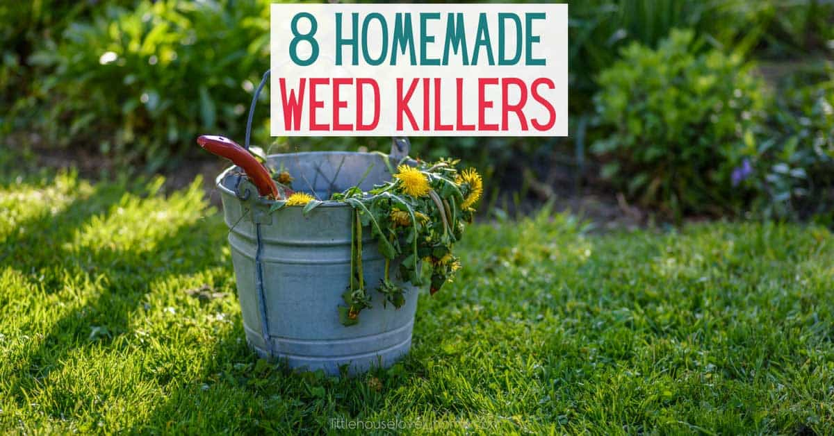 "A bucket full of weeds on green grass with the text reading ""8 Homemade Weed Killers"""