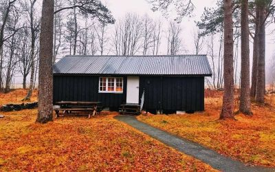 What Is the Cheapest Way to Live? 15 Low-Cost Housing Alternatives